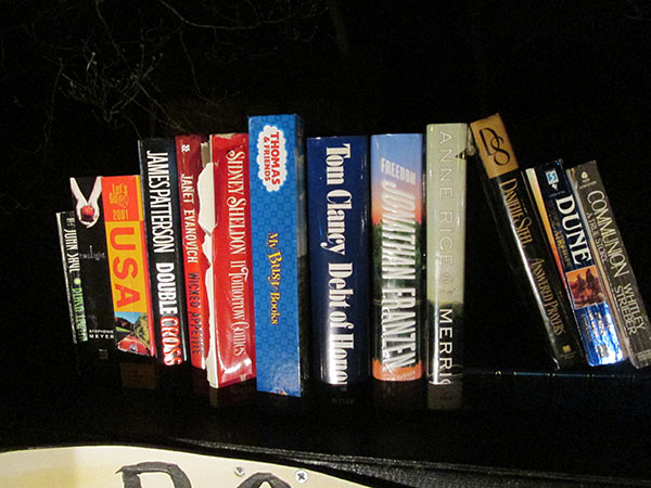 Close-up of the books on the mantelpiece.  I tried to pick something to please everyone.
